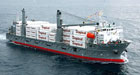 Tropical Shipping Freighter